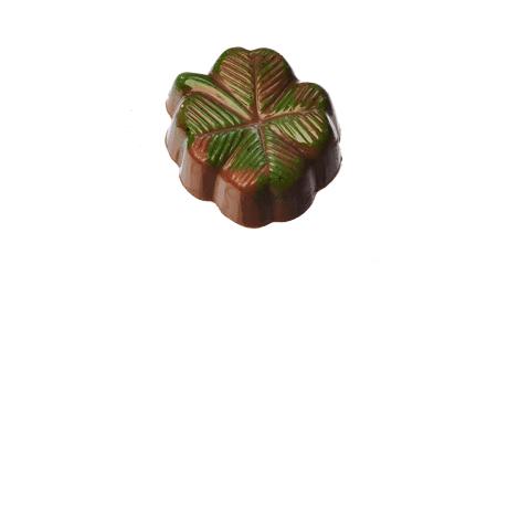 Apfel Praline in Milchschokolade